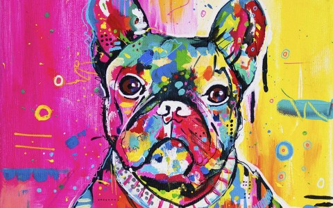franse dog kleurrijk schilderij